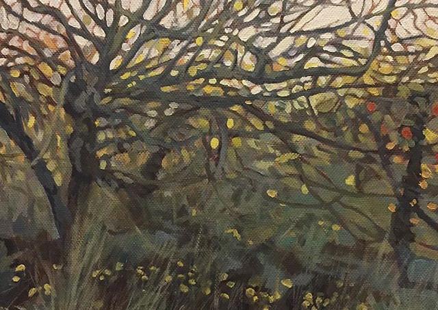 Overgrown Orchard