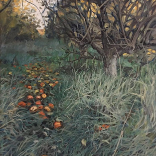 Tangled Orchards