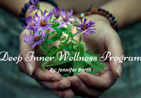 Deep Inner Wellness Program