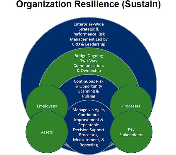 RT Organizational Resilience Sustain - I