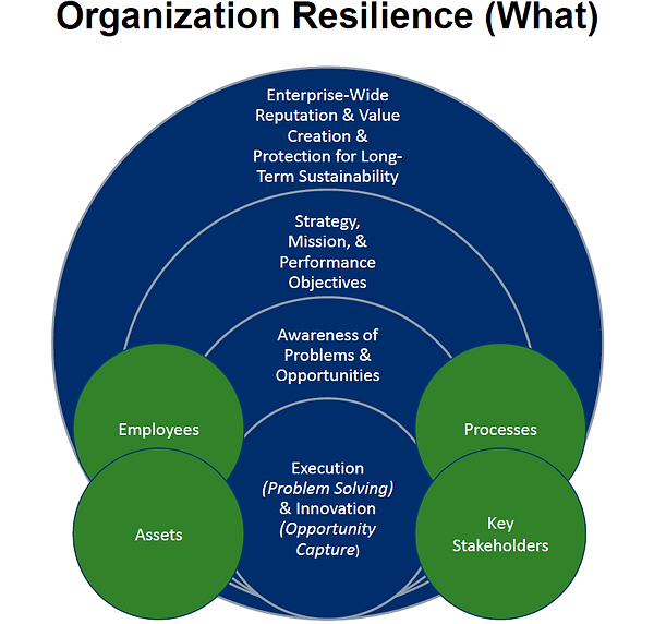 RT Organizational Resilience What - Imag