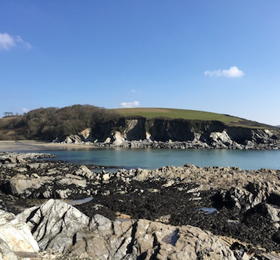 Polridmouth Cove on a Spring Morning