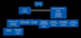 organizational structure-new-big-darknam