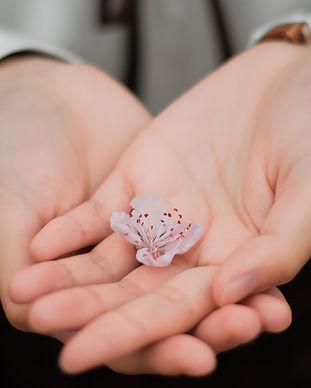blur-close-up-flower-hands-460295.jpg