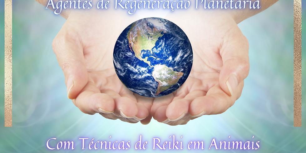 Curso de Reiki Nível III-A