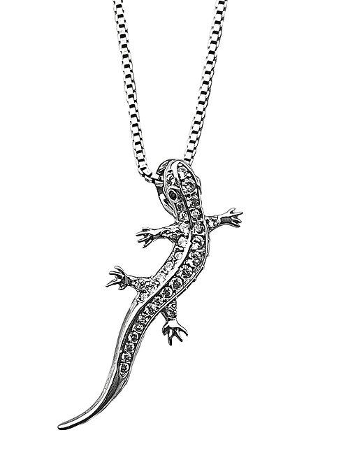 Collar Gecko