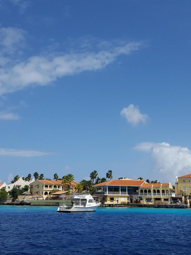 Buddy Dive in Bonaire
