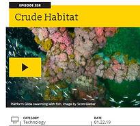 99 Percent Invisible Podcast Claisse Oil Platform Fish