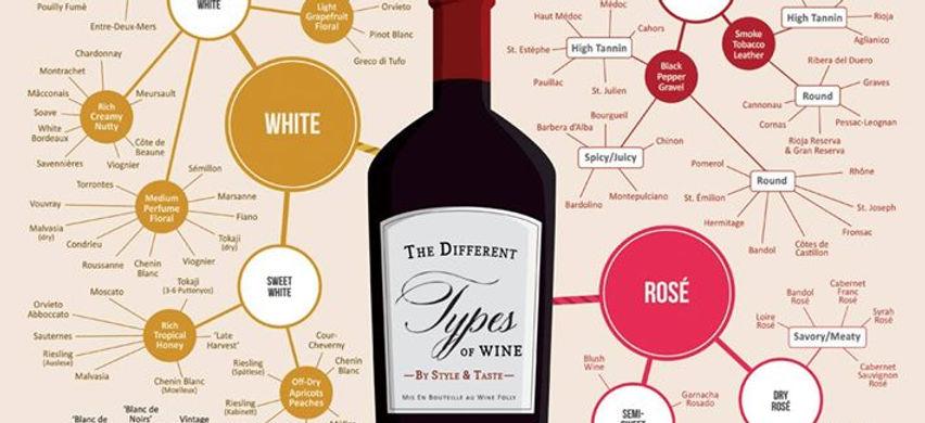 diagramma sul vino