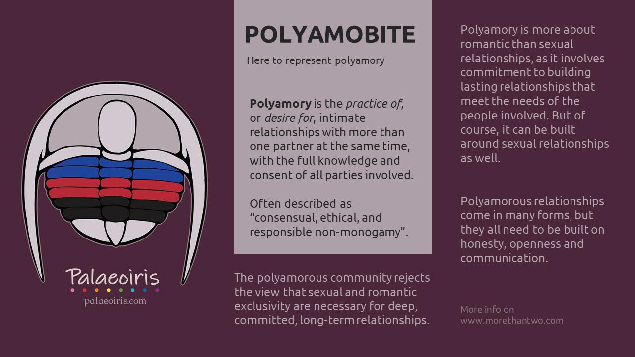 Polyamobite