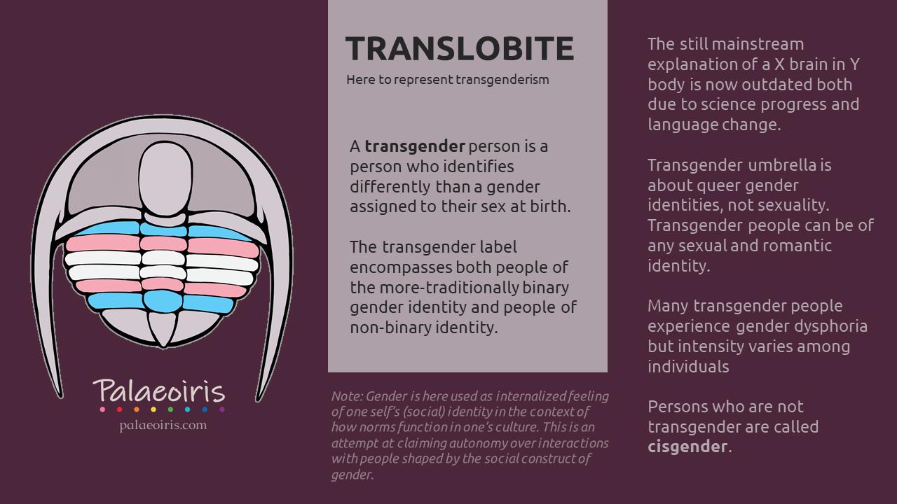 translobite
