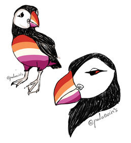 Lesbian Pride Flag Puffin