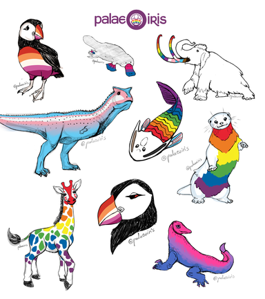 Collection of Pride Flag animal sketches