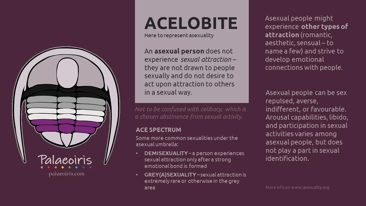 Acelobite