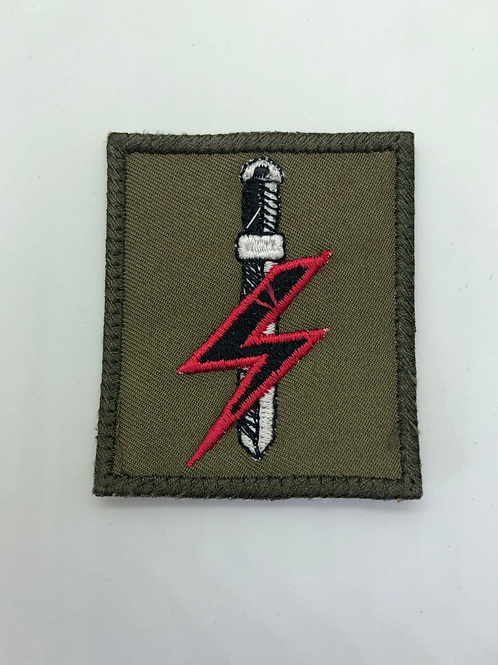 Special Forces Protection Group DZ Patch