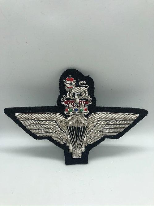 Parachutes Regiment Ass