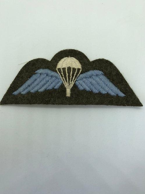 Para Wings (Sew on)