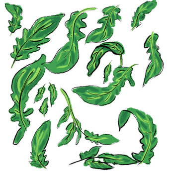 tomatoLeaves.png