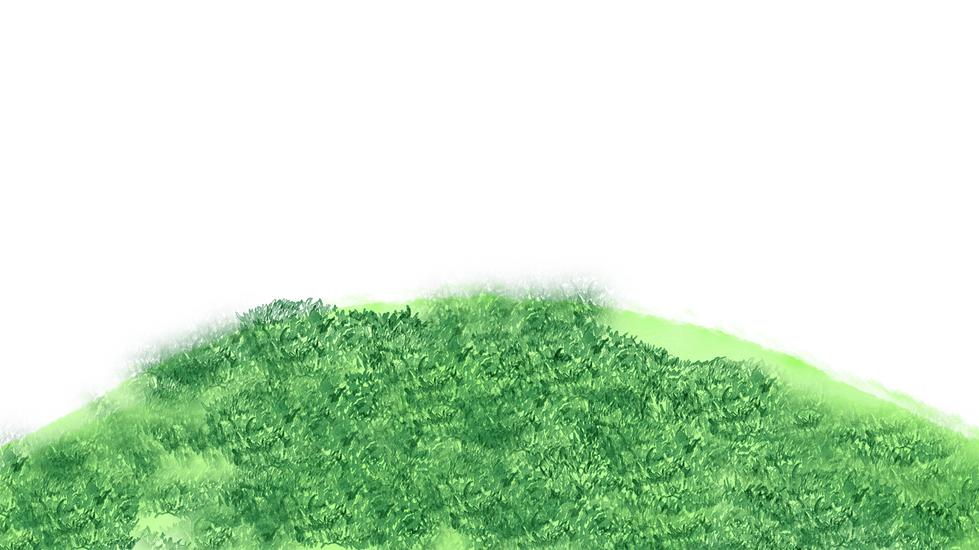 grassTextureFront02.png