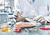 Análise-de-Alimentos-Qual-a-importância-
