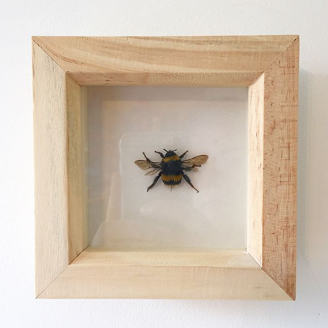Another bee ready to go fly to its new home! I make these to order. If you're interested please dm or email me contact_taxtiles.com_.jpg.jpg.jpg