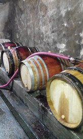 Caveau d'Oncin Montagnieu