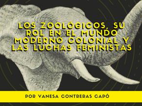 Los zoológicos, su rol en el mundo moderno colonial y las luchas feministas