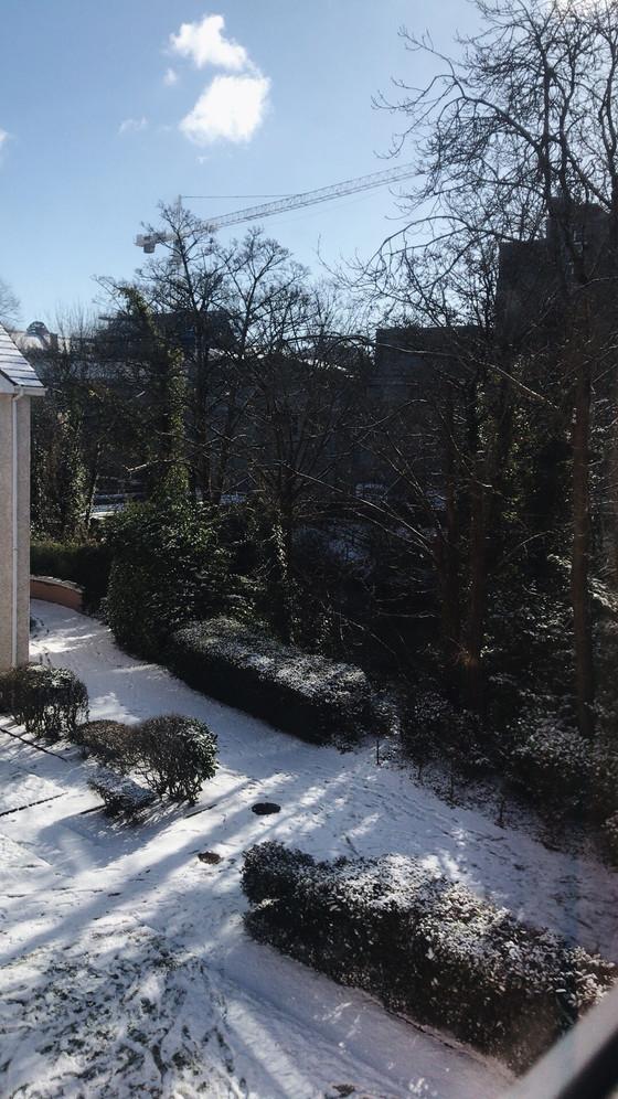 Snow Day(s)!