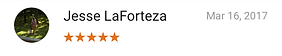 Review by Jesse LaForteza