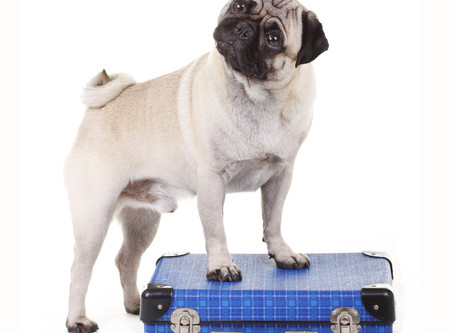 WHAT TO TAKE ON HOLIDAY