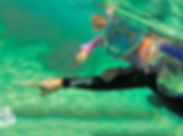 Aqua-Aventura-02.jpg