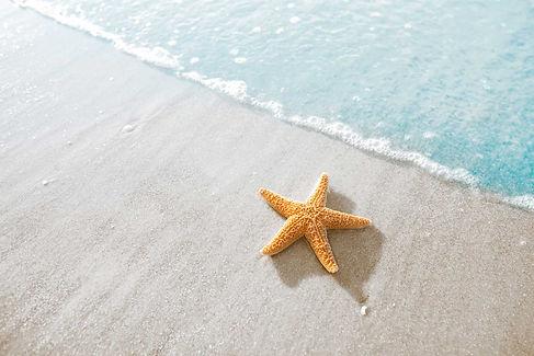 pousada-aragua-starfish.jpg