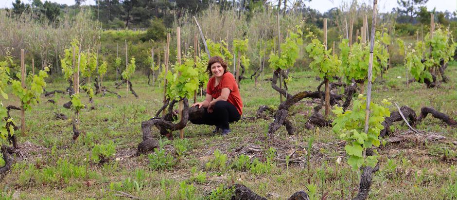 Filipa Pato - Biodynamische Weine in Bern