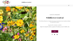 Wildflower Festival