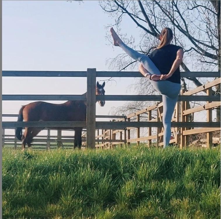 yoga @horses: vinyasa & stretch