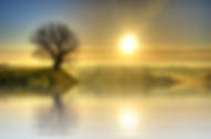 sunset-2497594_960_720.png