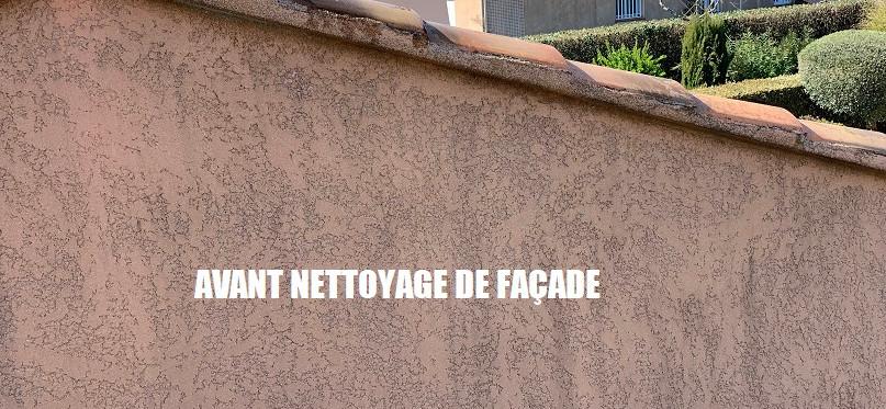Mur de façade avant nettoyage.jpg