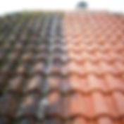 Nettoyage et demoussage de toiture 91