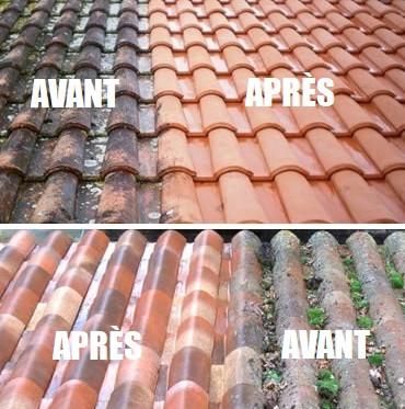 Nettoyage de toiture 78 - avant-après.jpg