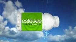 Estegee Commercial