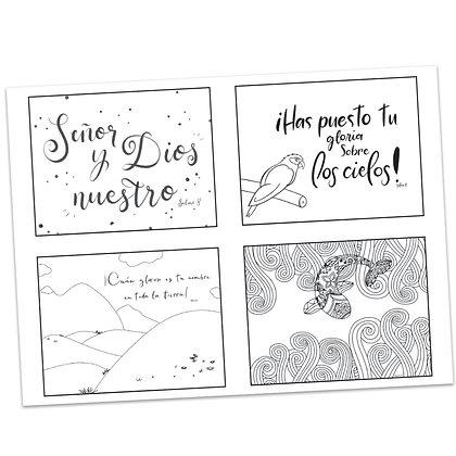 Salmo 8 (Psalms 8) Tarjetas de Oración (Prayer Cards) por Elizabeth Warren