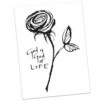 Pro Life Sunday by Sally Beck