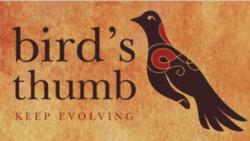 Birds Thumb