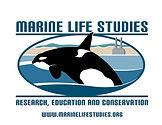 Marine Life Studies.jpg