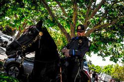 Gilroy Memorial Parade (58 of 189)