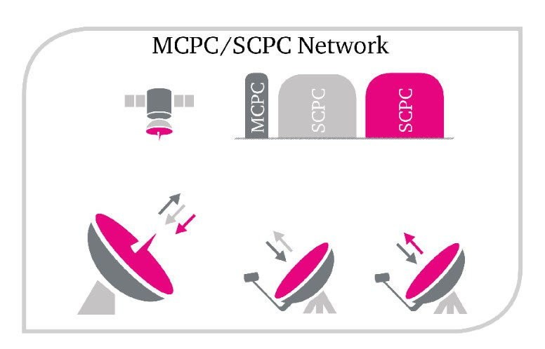Rede MCPC / SCPC.jpg