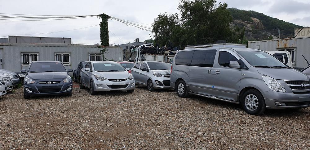 Grand Starex, Kia Morning, Hyundai Avante, Accent