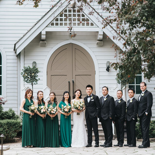 doctors-house-wedding-bridal-party-group