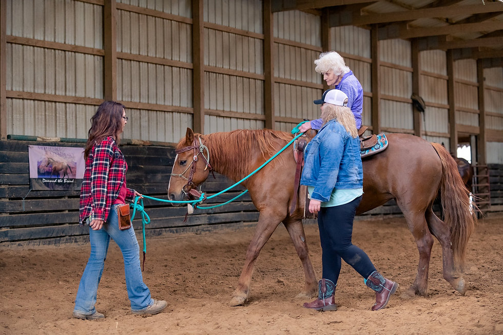 horse riding lessons, riding horses, double h horse farm, healing with horses
