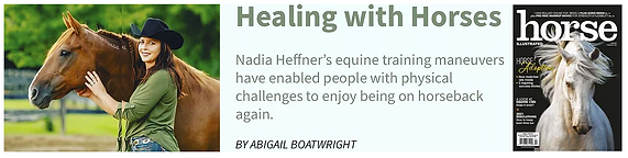 healing with horses horse illustrated article